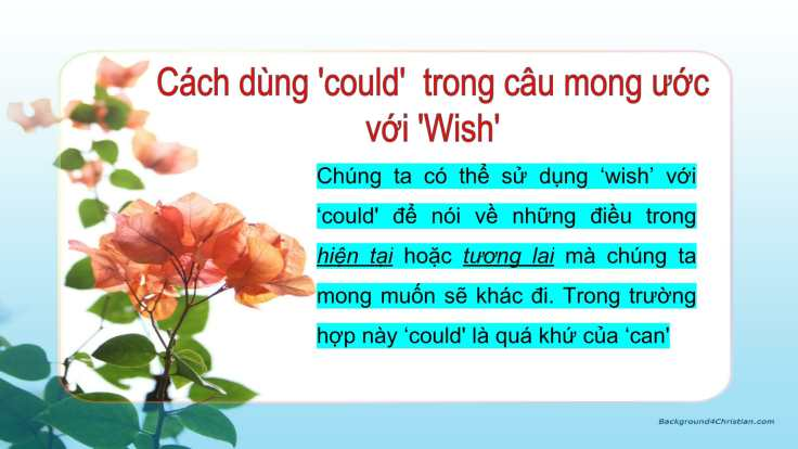 Câu mong ước với 'Wish'-04