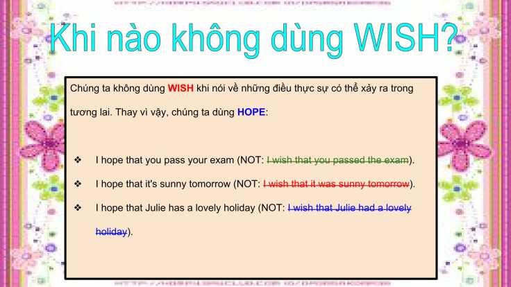 Câu mong ước với 'Wish'-11