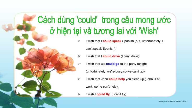 Câu mong ước với 'Wish'-05